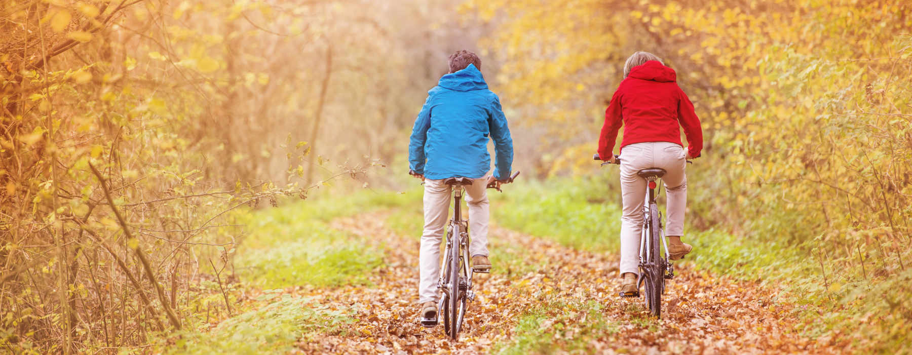 Image of seniors riding bikes in forest as concept for wise living over 50s exercise and fitness guides - from yoga for over 50 to how to find a personal trainer