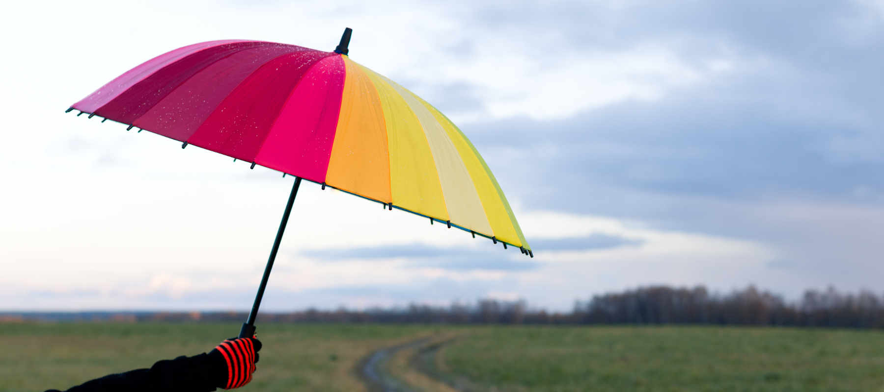 Image of colourful umbrella as concept for wise living over 50s online security guides - from avoiding identity theft to social media safety