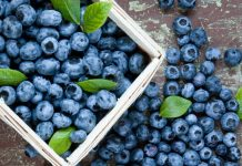 Image of blueberries in a basket as one of several brain food options for brain health