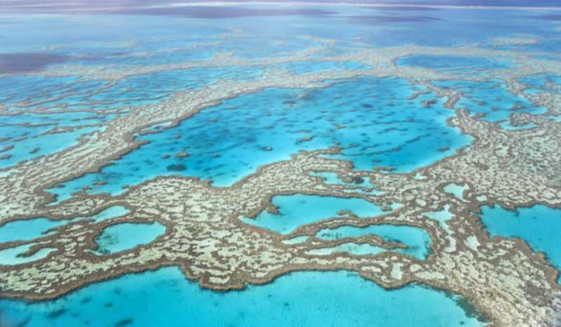 Bucket List Great Barrier Reef Australia