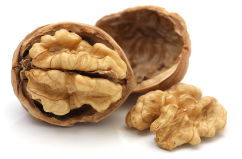 Brain food – walnuts Isolated on white cackground