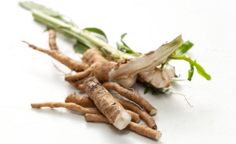 Prebiotic foods - Chicory root