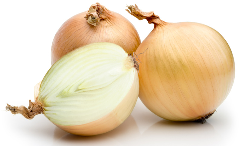 Prebiotic foods – Onions on a white background.