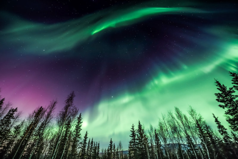 Northern Lights in Fairbanks Alaska