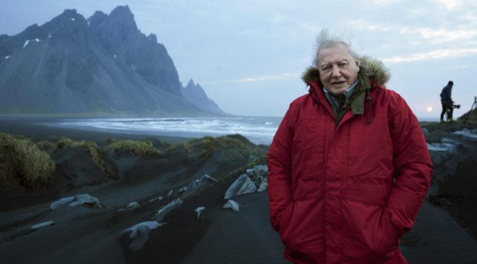 David Attenborough in Iceland