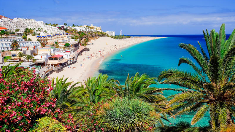 Winter sun destinations The beach Playa de Morro Jable with green palms, view on the town and the Atlantic coast. Location the Canary island Fuerteventura, Spain.