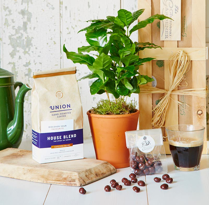 Give your gardening coffee lover this gift (The Gluttonous Gardener/PA)
