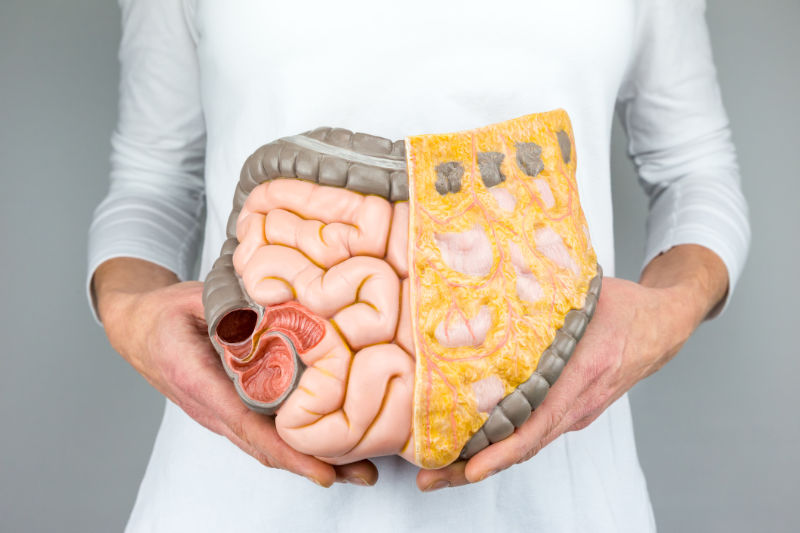 Your gut health is important for immunity and fighting disease