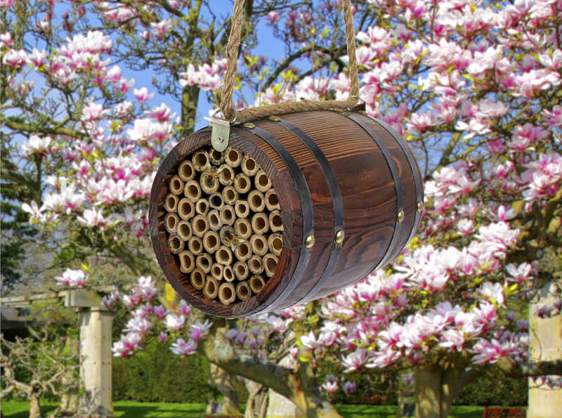 This bee'r barrel will lure solitary bees (Suttons/PA)