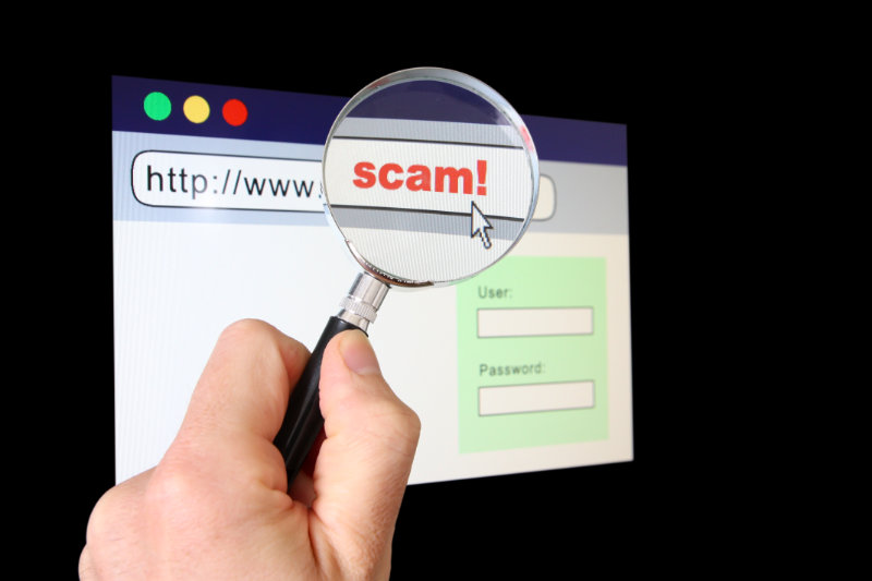 Be wary of fake websites that are created by criminals to steal your data.