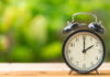 Save time on gardening jobs (iStock/PA)