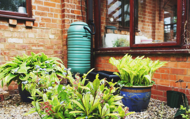 Water saving tips A water butt in a back garden with plants and a conservatory