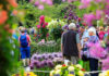 Gardening events 2020 guide
