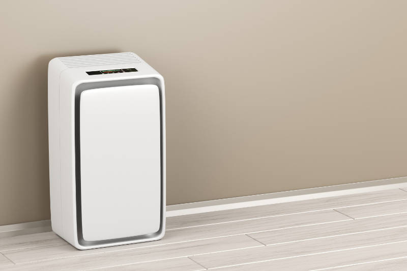 Air purifiers are worthwhile investment.