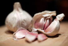 How to grow garlic at home guide.
