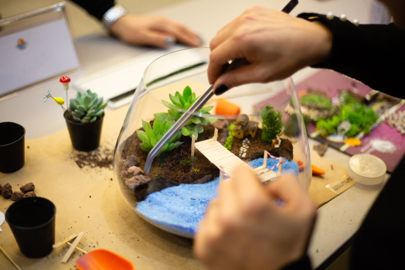 Making Terrarium workshop succulent cactus