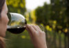 The best Rhone Valley red wines to buy now (iStock/PA)
