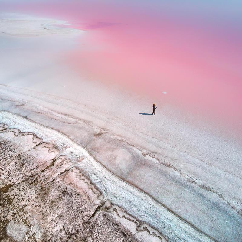 Yevhen Samuchenko, Ukraine, Shortlist, Professional, Natural World & Wildlife, 2020 Sony World Photography Awards/PA