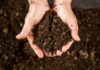 How to use compost guide