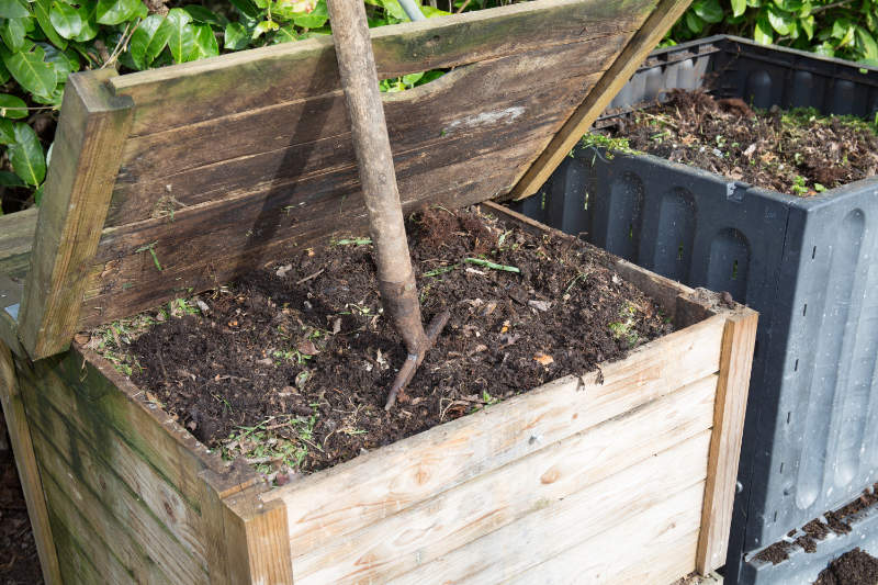 How to grow flowers for cutting mulch