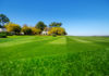 Lawn care tips for the perfect lawn