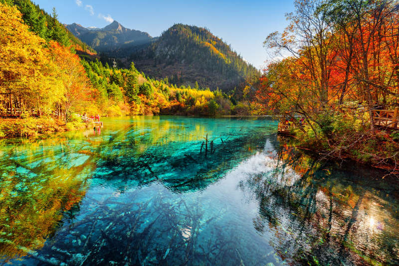 Most beautiful forest in the world Fantastic view of the Five Flower Lake with azure water