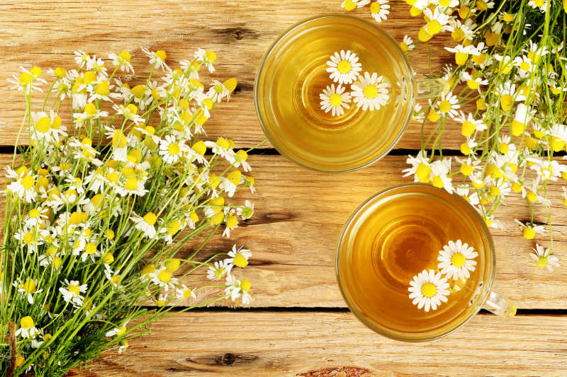 cups of chamomile tea with chamomile flowers on wooden planks