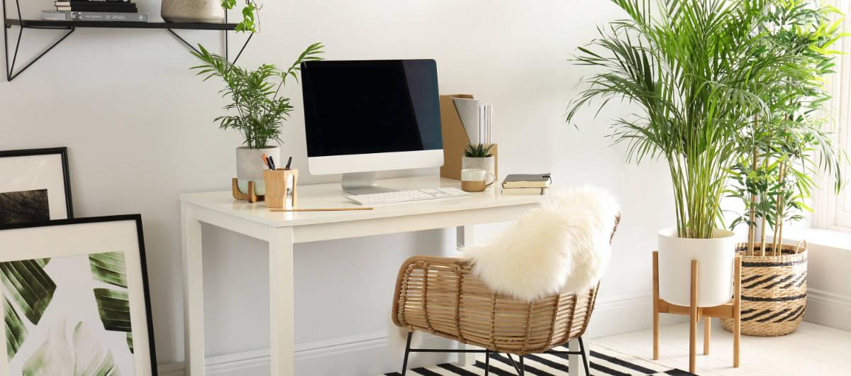 Home Workspace Design Ideas Home Garden Wise Living