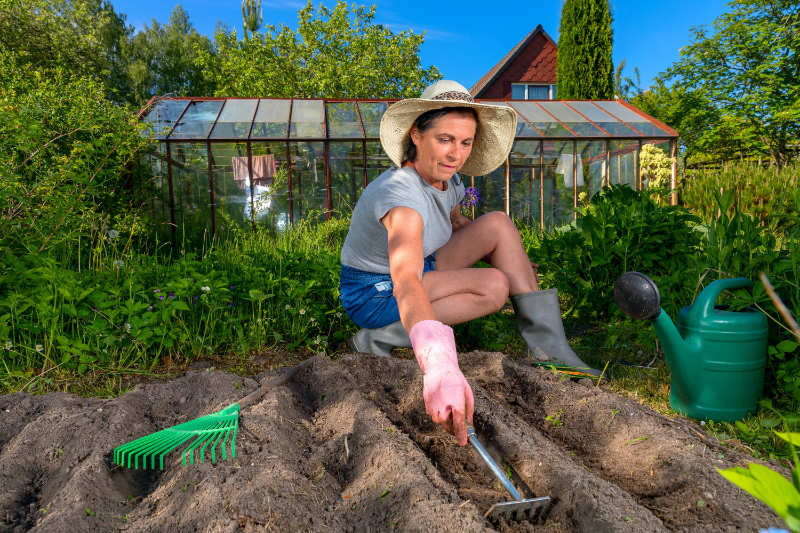 How to get rid of slugs with well drained soil