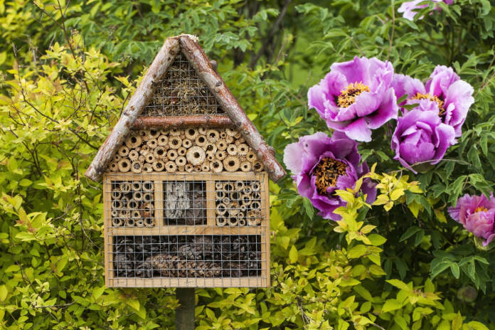 Insect house- hotel in a summer garden