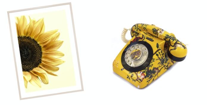 (l-r) Sunflower Poster, from £8.95, Desenio; Monkey Forest Vintage Telephone, £260, Mint & May (Desenio/Mint & May/PA)