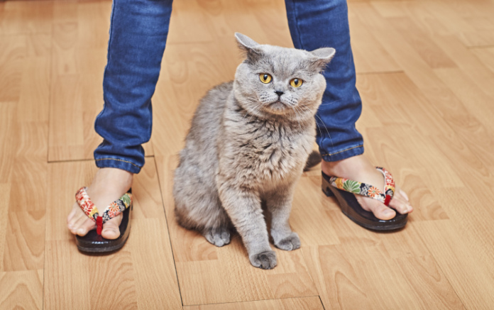 Generic photo of a young woman in flip-flops standing with a cat (Thinkstock/PA)