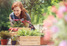 Gardening on a budget money saving tips guide