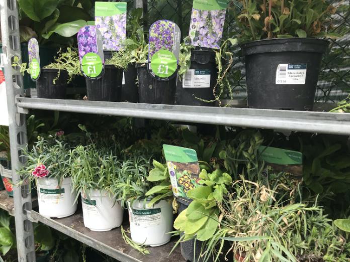 You may pick up a sale bargain (Hannah Stephenson/PA)