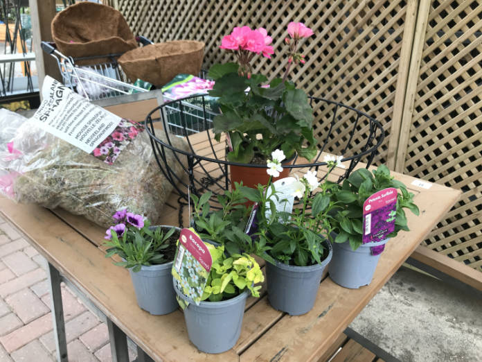 How to make a hanging basket - step 1