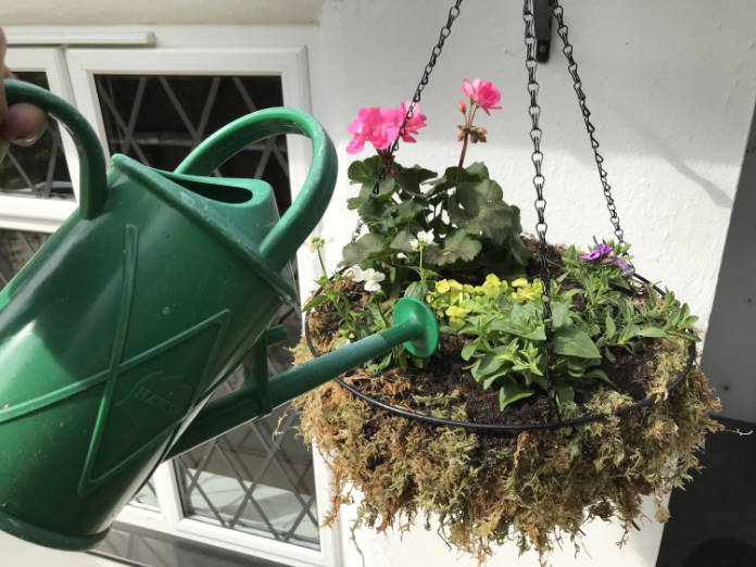 How to make a hanging basket - step 7