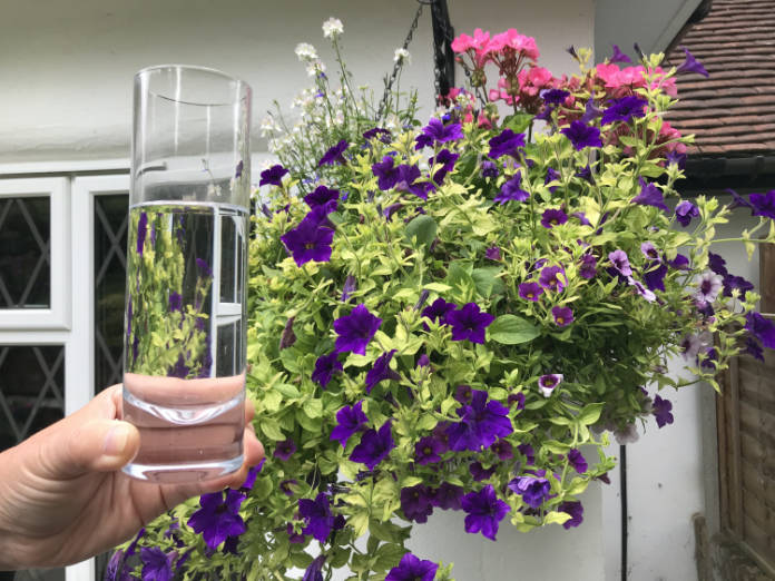 Can you keep your hanging basket going on a glass of water a day? (Hannah Stephenson/PA)