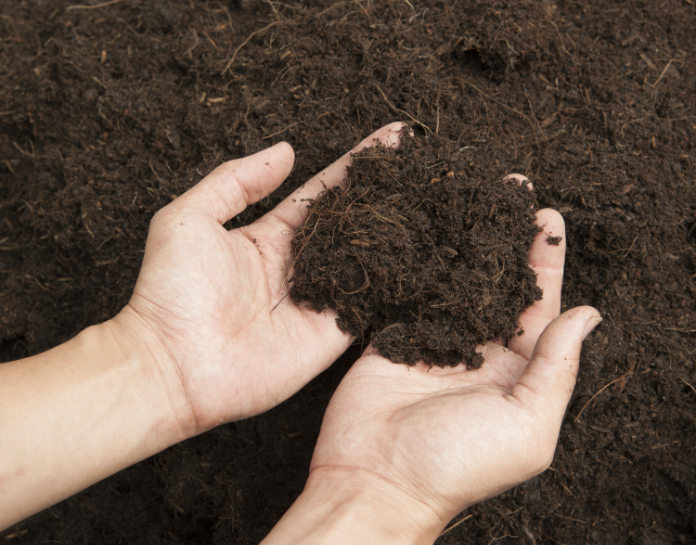 Test your soil