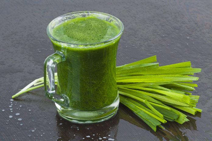 Chlorophyll water wheatgrass shot