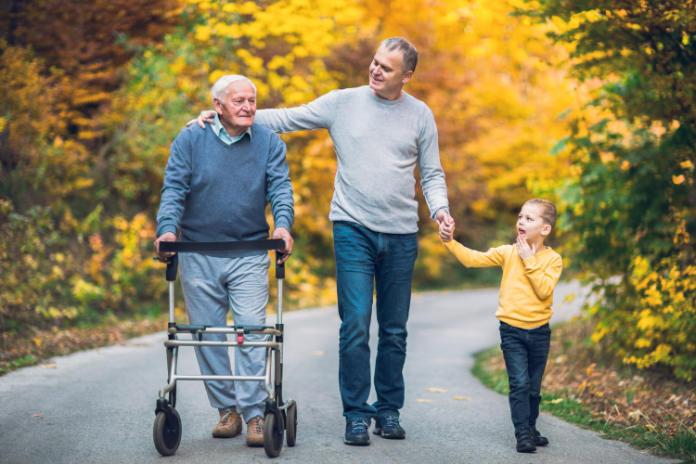IBD linked to dementia