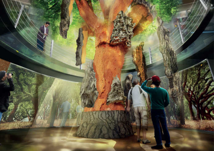 The new Planet Cork exhibit, due to open at WOW (WOW/PA)