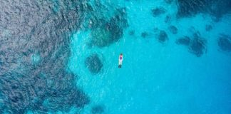 World Ocean Day – Aerial top down people snorkeling on coral reef tropical caribbean sea, turquoise blue water. Indonesia Wakatobi archipelago, marine national park, tourist diving travel destination