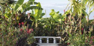 The Exotic Garden, RHS Garden Wisley (Joanna Kossak/RHS/PA)