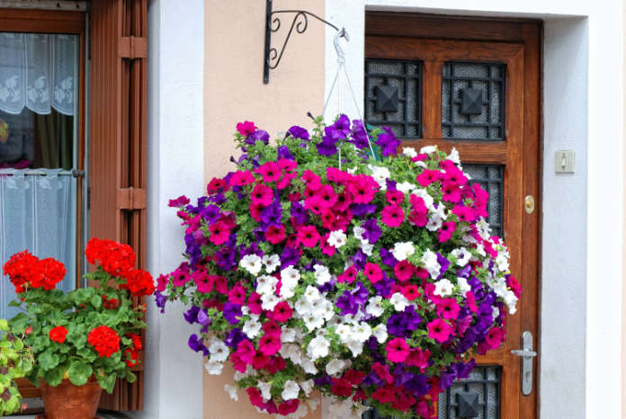 Put hanging baskets in the shade (Thinkstock/PA)