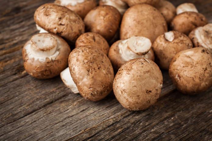 Natural light photo of fresh organic white mushrooms on rustic wood table