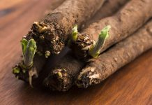 how to cook with salsify