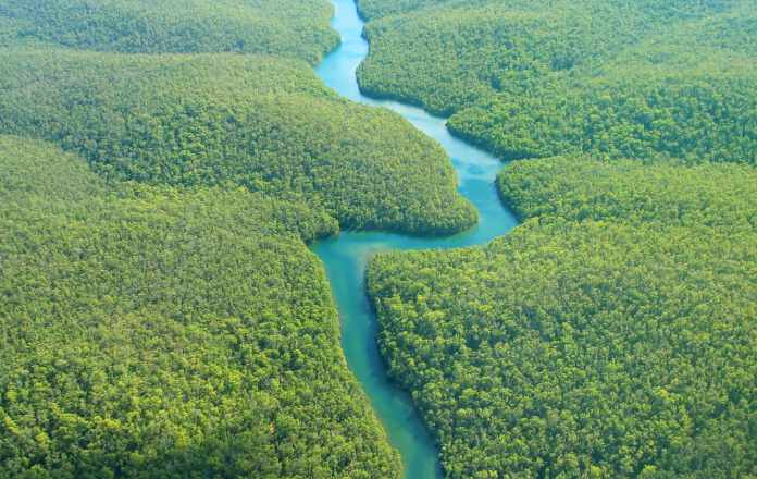 Aerial Photography - The Amazon River