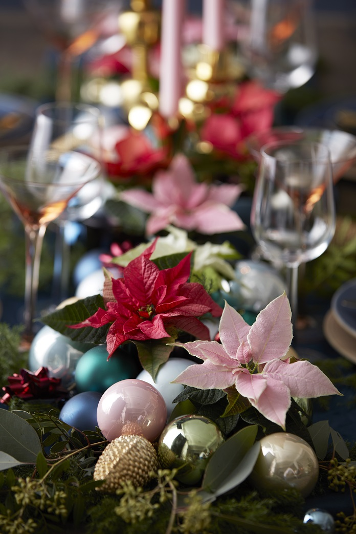 Poinsettia decoration ideas
