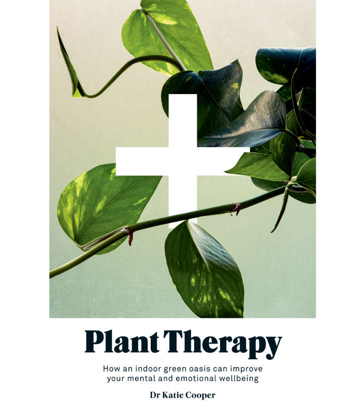 Plant therapy by Dr Katie Cooper