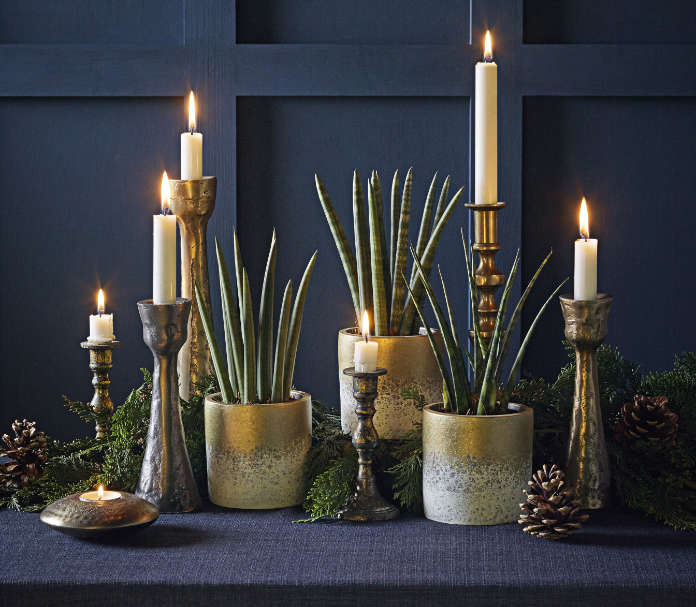 Group plants in stylish festive pots (Dobbies Garden Centres/PA)